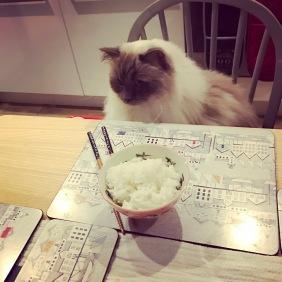 kenzo at dinner