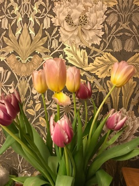 Tulips and William Morris